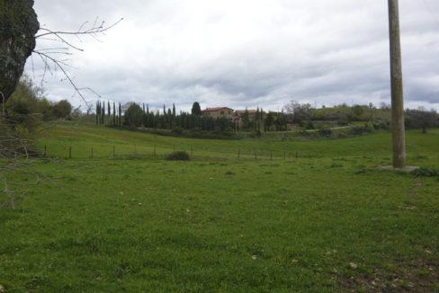 Casale a Scansano-1000x554-22