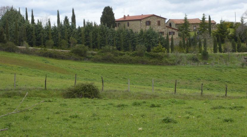 Casale a Scansano-1000x554-23