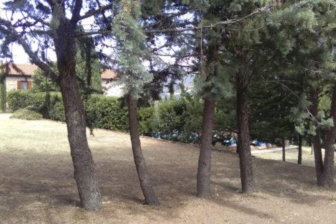 Casale a Scansano-1000x554-35