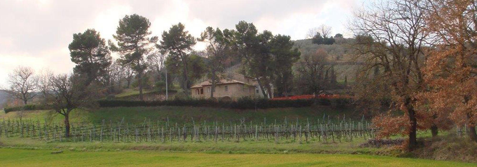 Bellissimi Casali in Umbria